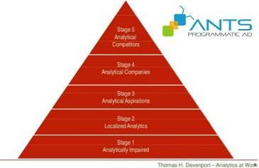 ANTS - 5 cấp độ phân tích trong kinh doanh của Thomas HDavenport 2014