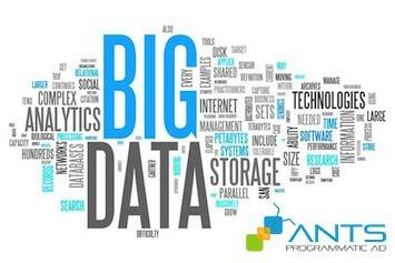 ANTS - Big Data and Data-Driven Marketing
