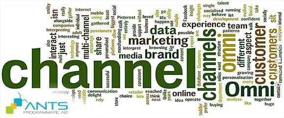 ANTS - Programmatic Ad and Data-driven Marketing 2015 - Quảng cáo tự động hóa