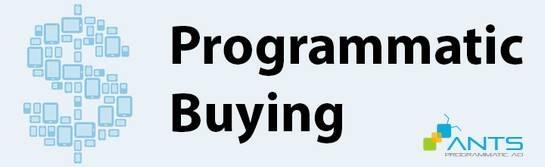 blog_2015-05_Publisher-ProgrammaticBuying
