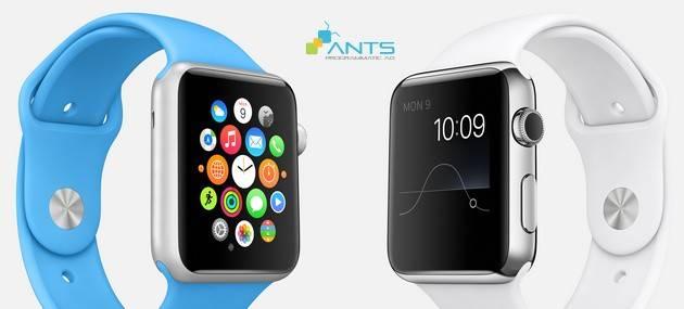 blog_201508_thiet-ke-web-toi-uu-khi-designer-va-cro-cung-hop-suc-phan-2_big picture-apple